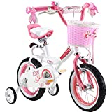 Best Bikes For Kids - R BABY PRINCESS PINK GRIL'S BIKES IN SIZE Review