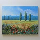 POPPIES IN A FIELD - Landschaftsmalerei.