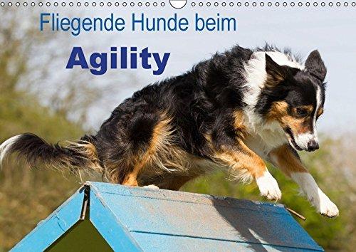 Fliegende Hunde beim Agility (Wandkalender 2017 DIN A3 quer): Aktive und bewegungsfreudige Hunde bei einer der Ausübung einer modernen Hundesportart (Monatskalender, 14 Seiten ) (CALVENDO Tiere)