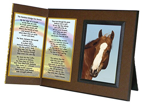 Rainbow Bridge Gedicht für Pferde Mitgefühl Bilderrahmen Geschenk und Memorial Andenken
