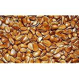 Nueces de pino tostadas sin cáscaras de 1700 gramos Grado A del Noreste de China (中国东北松子)
