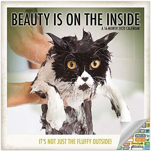 Beauty is on the Inside Kalender 2020 Set - Deluxe 2020 lustige und inspirierende Katzen Wandkalender mit über 100 Kalenderaufklebern (Schönheitsgeschenke, Bürobedarf)