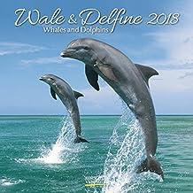Wale und Delfine 2018: Broschürenkalender mit Ferienterminen