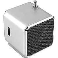 Arvin87Lyly Mini Radio FM, Tarjeta Portátil SD TF USB Reproductor de música estéreo para subwoofer Radio FM Coche doméstico