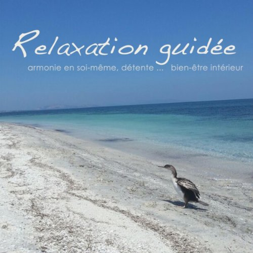 relaxation guidee detente