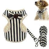 FOONEE Hundegeschirr, Hundegeschirr, Leinen-Set aus weichem Netz-Nylon mit Verstellbarer Leine, einfache Kontrolle für Kleine und mittelgroße Hunde und Katzen Black-XS