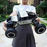RCZYBZ 1:16 Voitures RC - Voitures Tout Terrain 4WD 2.4 Ghz 4x4 Jouets Camion de Monstre électrique télécommandé pour Enfants et Adultes Toy Hobby, Or