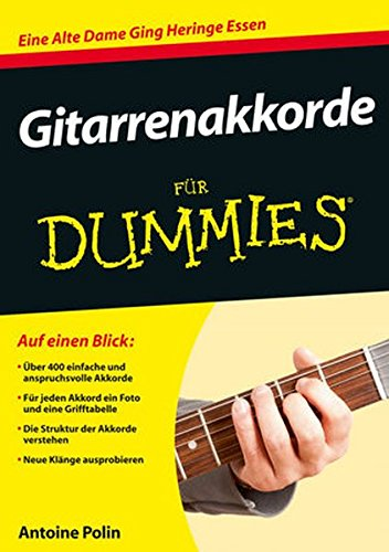 gitarrenakkorde-fur-dummies