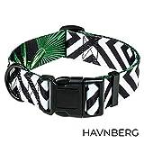 HAVNBERG Hundehalsband breites Halsband für große und mittelgroße Hunde in Gr. L Halsumfang 41,0cm – 66,0cm, Breite 3,8cm