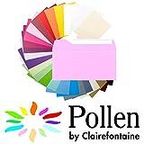 NEU Pollen Papeterie Kuvert lang 20 Stk. Bonbon