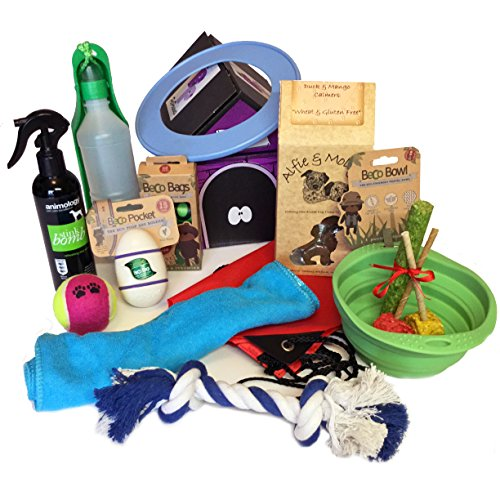 Dog Day Out Hamper
