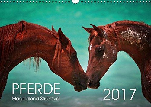 Pferde - Magdalena Strakova (Wandkalender 2017 DIN A3 quer): Ein Kalender für jeden Pferdeliebhaber! (Monatskalender, 14 Seiten) por Magdalena Strakova