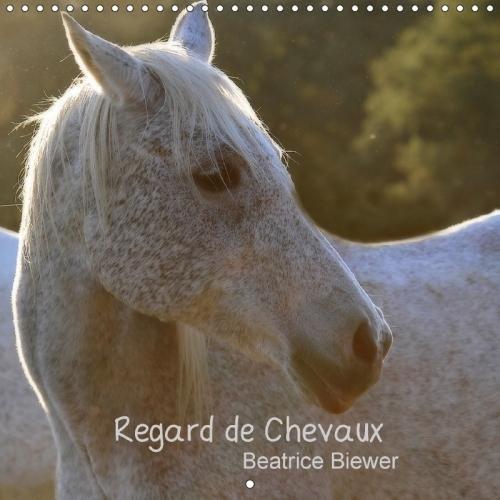 Regard De Chevaux 2018: Toute La Douceur Dans Le Regard D'un Cheval (Calvendo Animaux) par Beatrice Biewer