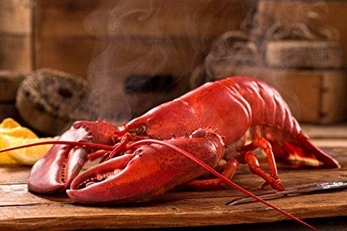amazingfood-hummer-frisch-abgekocht-in-1a-topqualitat-500-g