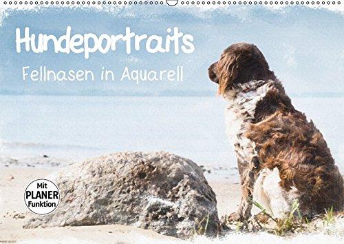 Hundeportraits - Fellnasen in Aquarell (Wandkalender 2018 DIN A2 quer): Hundeportraits in Aquarell von der Künstlerin und Fotografin Sonja Teßen ... 14 Seiten ) (CALVENDO Tiere)