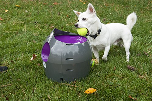 PetSafe Automatic Ball Launcher Dog Toy, Interactive Tennis Ball Throwing Machine for Dogs, Water Resistant 4