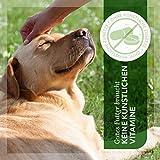 AniForte® PureNature Nassfutter 6x400g Hundefutter- Naturprodukt für Hunde - 4