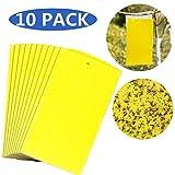 TIANOR 10 Stück Beidseitig Gelbtafeln Sehr effiziente Gelbtafeln Gegen Fliegende Schadinsekten- Sichere und Umweltfreundliche Insekt-Traps (15 x 25cm)