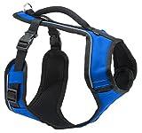 PetSafe Easy Sport Hundegeschirr XS blau, extra Tragekomfort, Reflektoren, Geschirrgriff, für sehr kleine Hunde