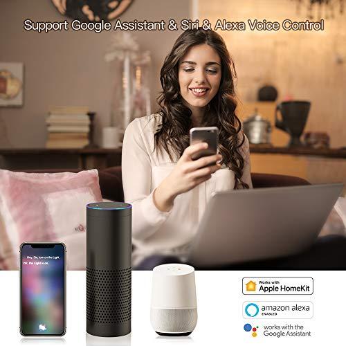 Koogeek Enchufe Inteligente Wifi, Inalámbrico Smart plug HomeKit,  Control Remoto de Voz Siri/Alexa/Google Assistant,  No se requiere Hub,  Temporizador,  Android e iOS 2.4Ghz WiFi (1 Pack)