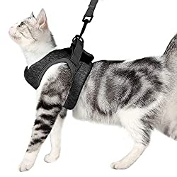 Cat Harness and Leash Set Ultra-Light Kitten Collar Soft and Comfortable Cat Walking Jacket Running Cushioning escape proof Suitable for Puppies Rabbits with Cationic Fabric (M, grey)