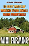 Mini Farming: 10 Best Ways Of Making Your Small Farm Profitable