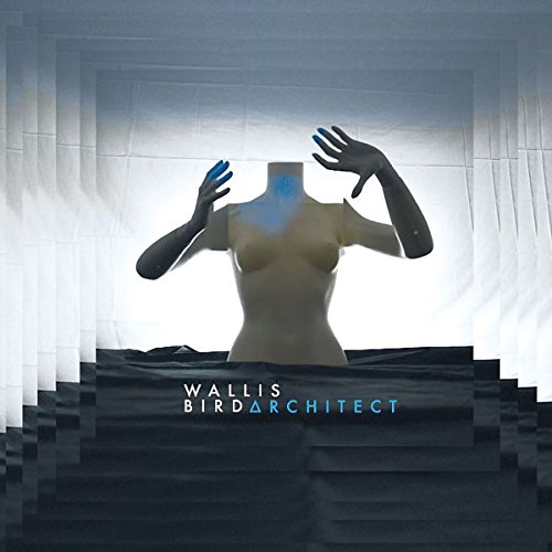 Architect (2lp+2cd Deluxe Edt.180gr)