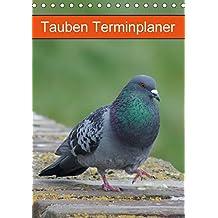 Tauben Terminplaner (Tischkalender 2018 DIN A5 hoch): Echte Schönheiten (Planer, 14 Seiten ) (CALVENDO Tiere) [Kalender] [Apr 01, 2017] Kattobello, k.A.