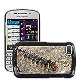 Just carcasa caliente estilo teléfono celular PC Funda rígida//m00140185Caterpillar Oriental Verde larvas//Blackberry Q10