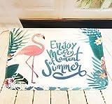 Fußmatte, DOTBUY Flamingos Flanell Innen und Aussen Fussmatten Rutschfest und Waschbar Praktische Fußabtreter Fussabstreifer Flur Teppich Wohnzimmer (40 * 60CM, Flamingos F)