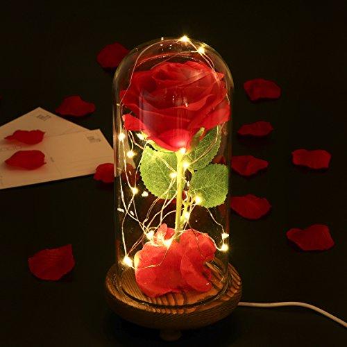 LEDMOMO Rosa de seda roja y luz LED con pétalos caídos en una cúpul