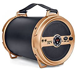 iBall Music Karaoke Barrel V 2.0 Bluetooth Portable Speaker With Wireless MIC & Remote Built in FM Radio