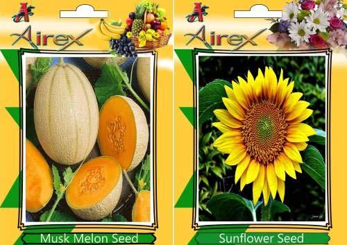 Pinkdose Musk Melon und Sonnenblumenkerne