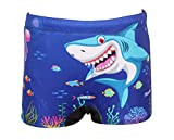 #8: mitushi products Boy's Swim Shorts Shark (3-4 Years)