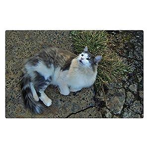 iRocket Indoor Teppich/Matte–Pretty grau & weiß Katze (59,9x 39,9cm 60cm x 40cm)