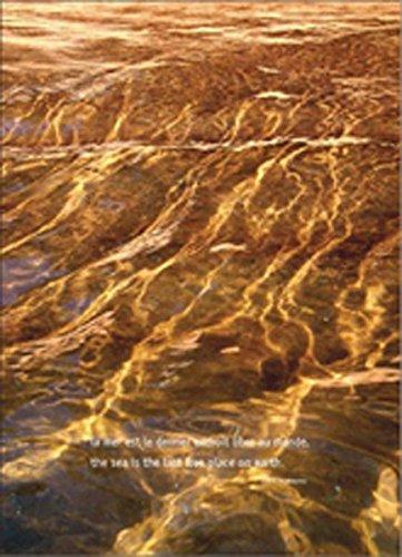 Sven Hoffmann - Aqua Globalis: The sea is the last free place on earth (Ernest Hemingway) -
