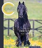 Friesenpferde: Reiten, Fahren, Halten (Cadmos Classic Collection)