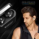 Zebronics Peace Wireless Earphone (Black)