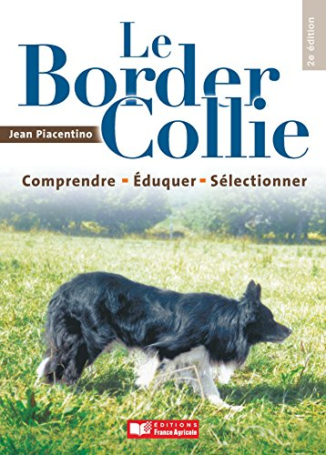 le-border-collie
