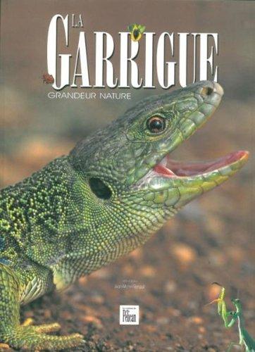 La Garrigue grandeur nature par Jean-Michel Renault