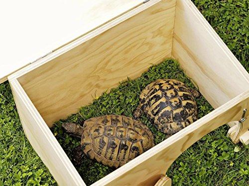 Novit blitzen casetta rifugio per tartarughe di terra for Vaschette tartarughe