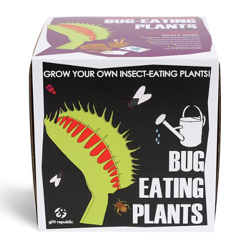 sow-and-grow-bug-eating-plants-venus-flytrap-and-pitcher-plant
