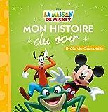 Telecharger Livres LA MAISON DE MICKEY Mon Histoire du Soir Drole de grenouille (PDF,EPUB,MOBI) gratuits en Francaise