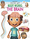 The Brain (How My Body Works)