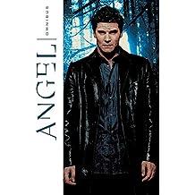 Angel Omnibus Volume 1