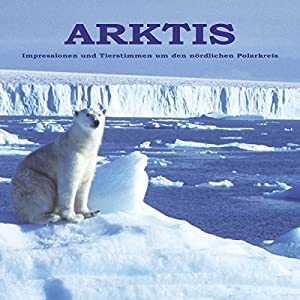 ARKTIS Vögel, Tiere, Natur: Nördlich des Polarkreises