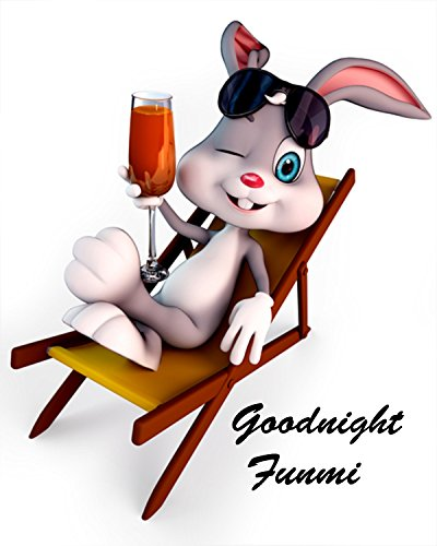 Good night Funmi (Ms. Good night Book 1) (English Edition) Corp Bunny