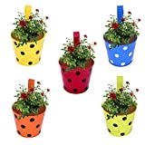 #3: CINAGRO - Set of 5 -Polka Dotted Railing Planter, Plant Holder (Maroon, Orange, Blue, Yellow, Lemon)