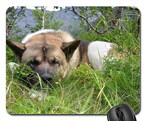 Gaming-Mauspads, Mäusematte, Hundepause Tierruhe Rest Entspannen Sie Sich Netter Schlaf