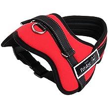 Arnés ajustable al pecho para perro con acolchado suave, ayuda para el adiestramiento de paseos sin tirones